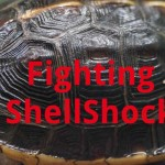 "Photo of turtle shell with words ""Fighting ShellShock"""