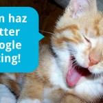 Cat talking about Google rating.